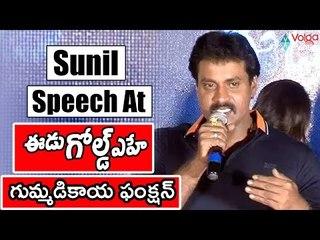 Sunil Speech At Eedu Gold Ehe Gummadikaya Function    Sunil, Richa Panai    2016