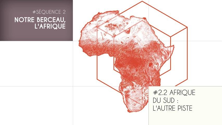 MOOC Les origines de l'Homme  - Sujet 2.2 : Afrique du Sud : l'autre piste