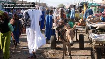 Trip to Nouakchott Mauritania Travel Video Guide Documentary نواكشوط موريتانيا