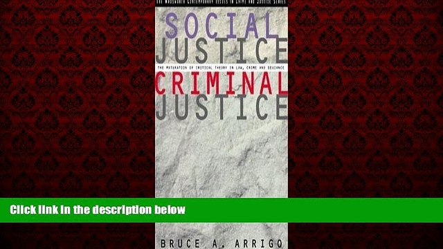FREE DOWNLOAD  Social Justice/Criminal Justice: The Maturation of Critical Theory in Law, Crime,