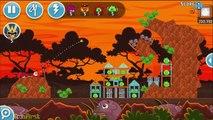 Video Angry Birds Friends: Meet The PanGolin