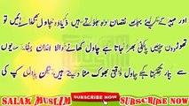 Chawal aur Biryani Khaney Waly sunain__By Salam Muslim__چاول کے شوقین دھیان سے سنیں