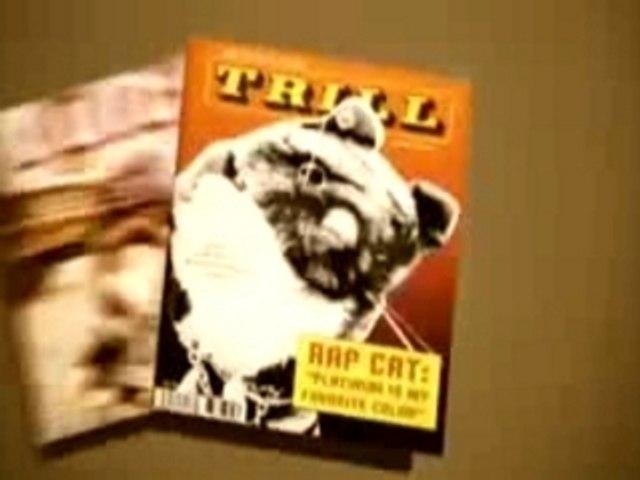 Rapcat - Meow Meow (le chat ganster - clip)