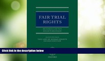 Big Deals  Fair Trial Rights (Law of Human Rights - Supplements Only)  Full Read Most Wanted