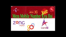 How to check call history of any telenor number - video dailymotion
