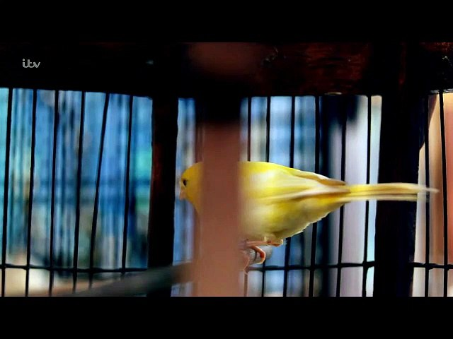 Tutankhamun ITv S01E02 with English Subtitles