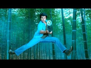 Ram Charan Thunder Action Fight Scene...