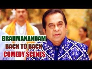 Brahmanandam Back To Back Comedy Scenes || Non Stop Comedy Scenes || Vol 6