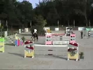 Cheval de grand prix Hamada rouge / grand prix horse