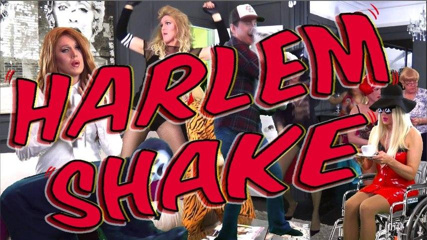 Harlem Shake (Madonna, Gaga, Lana Del Rey, Cher, Rihanna, Katy Perry, Liza)