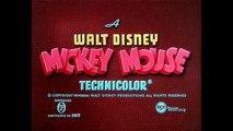 Dessin animé : Le perroquet de Mickey / The Mickeys parrot