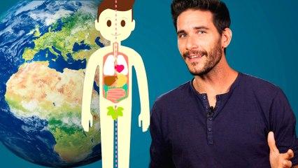 ¿Cómo surgió la vida en la Tierra?