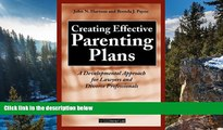 Deals in Books  Creating Effective Parenting Plans: A Developmental Approach for Lawyers and
