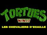 Tortues Ninja - Générique Long