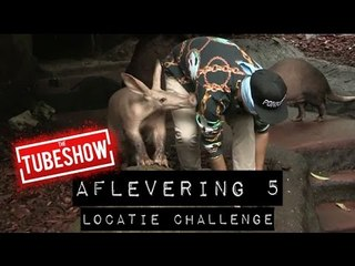 (AARD)VARKENS VERZAMELEN - locatie challenge #5