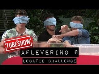 WTF DIT ZIJN BEESTJES - Locatie challenge #6