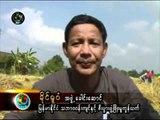 DVB - 29.11.2010 - Burma News 3