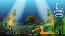 Leafy Sea Dragon Nursery Rhyme | ChuChuTV Sea World | Animal Songs & Nursery Rhymes For Children