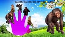 Monkey Finger Family 2D | Children Rhymes TV 2D Rhymes | Nursery Rhymes For Children