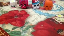 Extreme Fun with the Shopkins - part 1