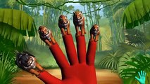 Tiger Animals Cartoons Finger Family Collection | 3D Tiger Animated Finger Famil