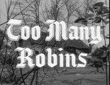 44. Adventures Of Robin Hood Too Many Robins