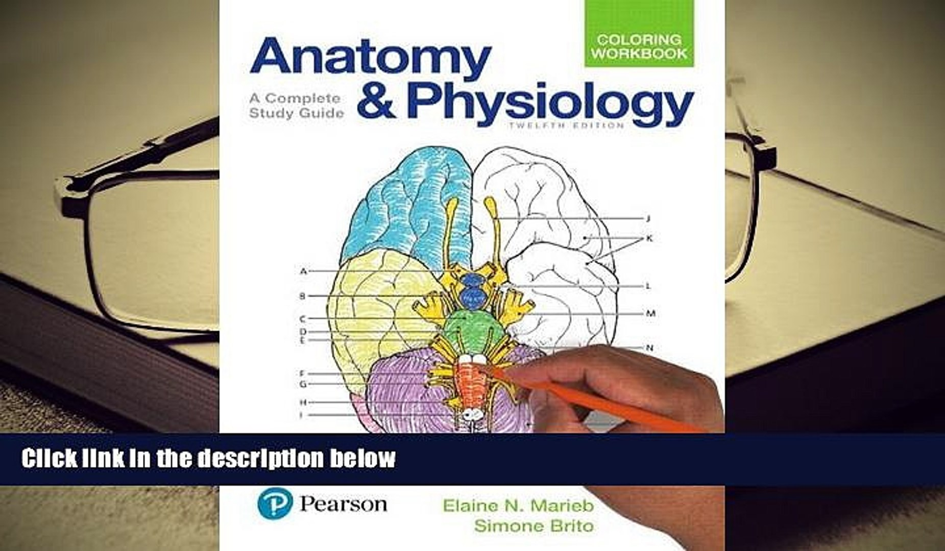 Audiobook Anatomy and Physiology Coloring Workbook: A Complete Study Guide  (12th Edition) For Ipad