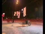 Téléthon 2007 esra bretagne