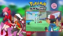 Pokemon Black & White Combo Special Episode 19, 20, 21, 22