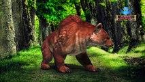 Best Fun Pet Dog Giant Bear Finger Family Song | Animals Cartoons Preschool Nursery Rhymes For Kids