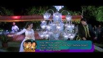 Main Teri Deewani Hoon _ Alka Yagnik, Kumar Sanu, Sadhana Sargam_ Aulad Ke Dushman 1993 Songs _