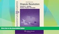 Big Deals  Dispute Resolution: Examples   Explanations  Full Read Best Seller
