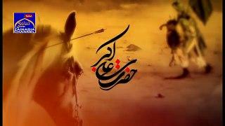 Kya Mere Jawan Laal Kay Mir Hussan Mir 2016 17 HD