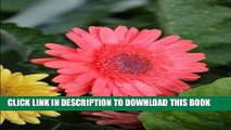 [PDF] Shasta Daisy Journal:150 page ruled journal/diary: Log your dreams, musings and fantasies