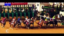 Horse Excellence: Preview Breeders Cup (Horse Racing)