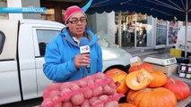 D!CI TV : Alpes du Sud : Tour des marchés de Provence et des Alpes