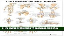 [PDF] Ligaments of the Joints Anatomical Chart Popular Online