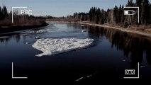 Le monstre du Loch Ness a-t-il été aperçu en Alaska ?