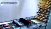 Flow Pack Machine, Horizontal Packaging Machine, Flow Wrapper, Flow Wrap Machine and Wafer Plant