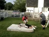 Triple Threat Match Raph vs. JP vs. Alex