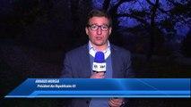 D!CI TV : Alpes du Sud : Les lignes ferroviaires Grenoble-Gap-Briançon et Valence-Gap-Briançon sauvées