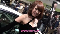 New Song 2016 Mandarin Chinese Disco House Music - Zhe Bei Zi He Ni Zai Yi Qi Remix 2016 by DJ Pink Skw (LJP)