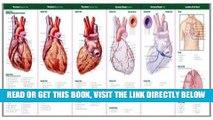 [FREE] EBOOK Anatomical Chart Company s Illustrated Pocket Anatomy: Anatomy of The Heart Study