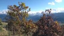 D!CI TV : Alpes du Sud : L'automne arrive dans nos montagne (clip vidéo)