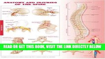 [FREE] EBOOK Anatomy and Injuries of the Spine Anatomical Chart BEST COLLECTION