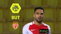 But Radamel FALCAO (25ème) / AS Monaco - AS Nancy Lorraine - (6-0) - (ASM-ASNL) / 2016-17