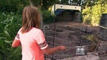 Une fille de 9 ans joue dans sa cour arrière, puis elle voit des petites jambes rosées dans un buisson. Elle est déstabi