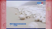Des centaines de boules de neige énormes en sibérie ! Ballons de foot LOL