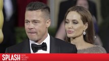 Angelina Jolie Wants to Prevent Brad Pitt From Shared Custody