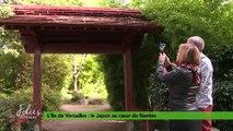 Folies Botaniques à l'île de Versailles #1